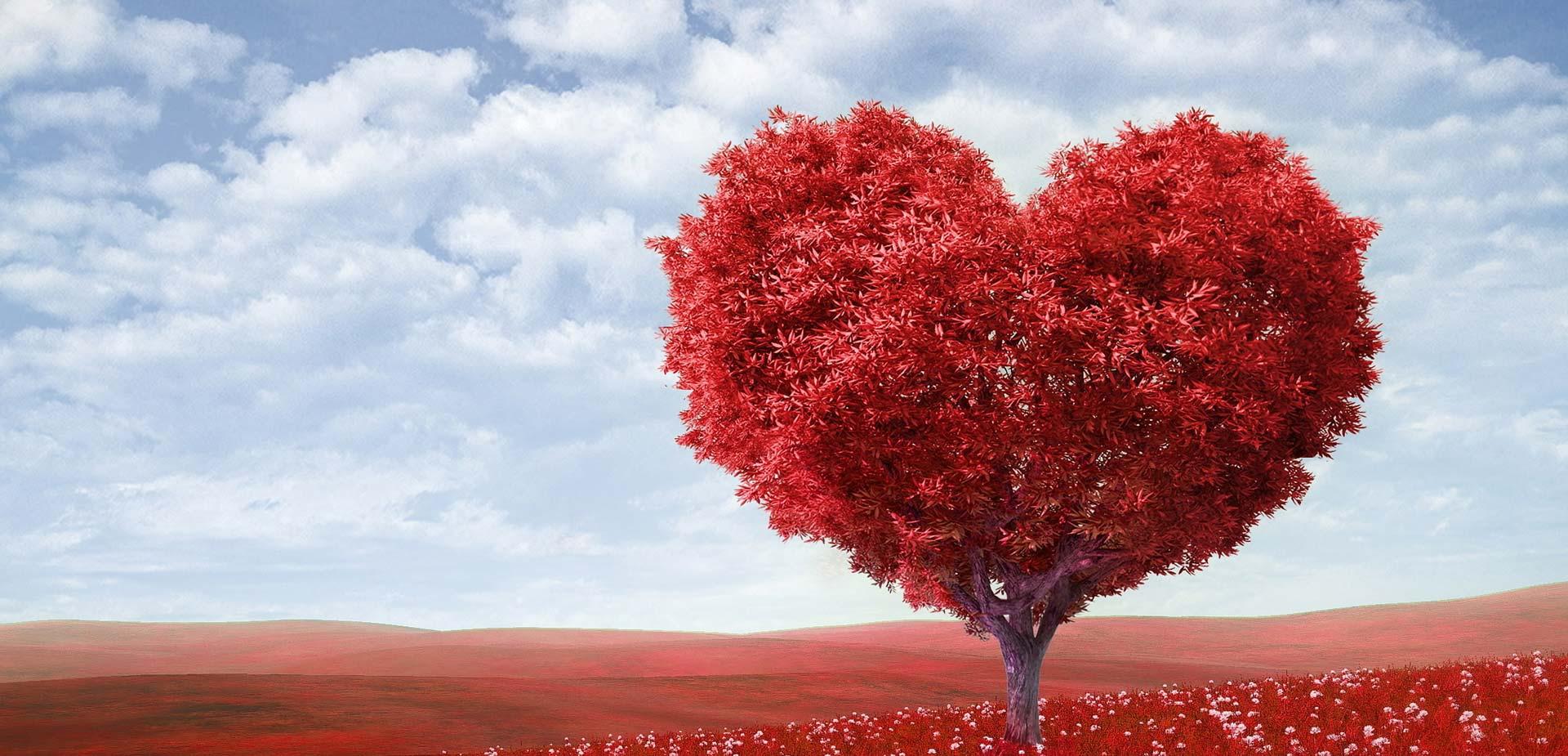 HRVATSKA KUĆA SRCA Obilježavanje Svjetskog dana srca i pokretanje online kalkulatora za kardiovaskularni rizik