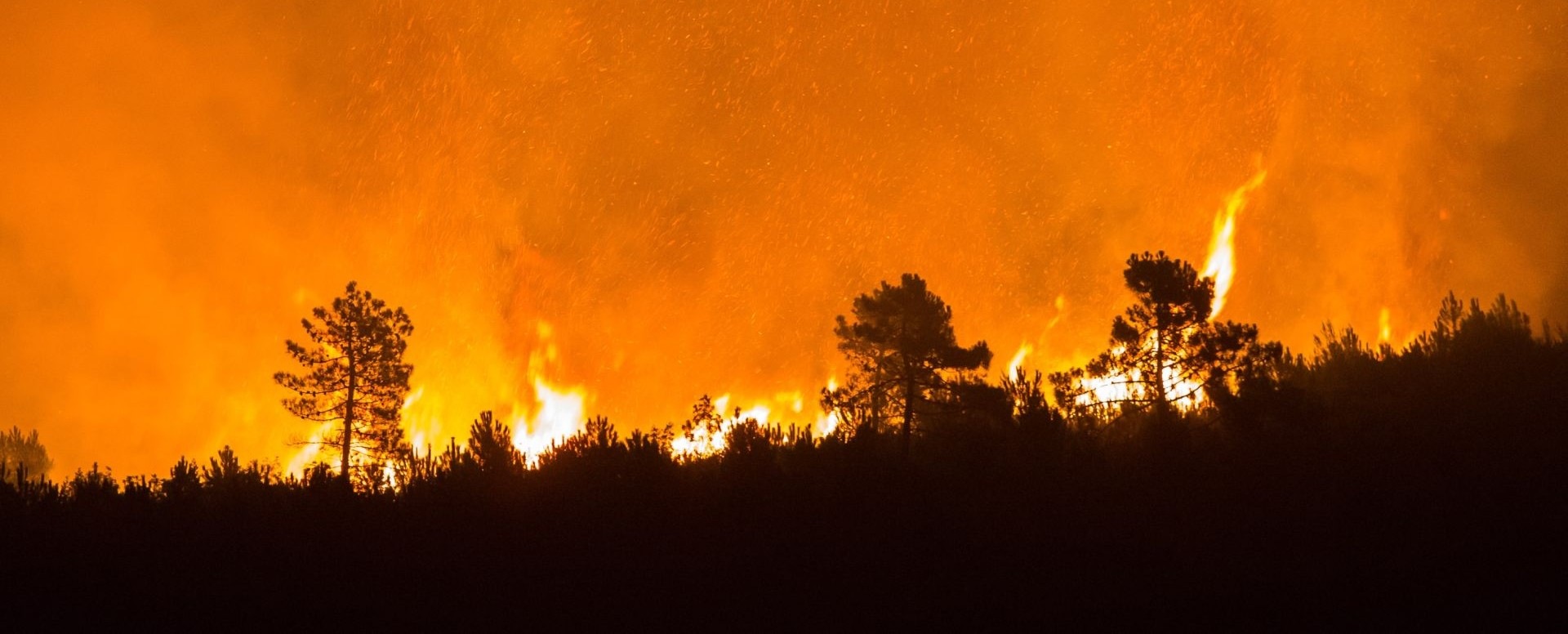 VIDEO: Preko vikenda u sjevernoj Španjolskoj gorjelo oko 130 divljih požara