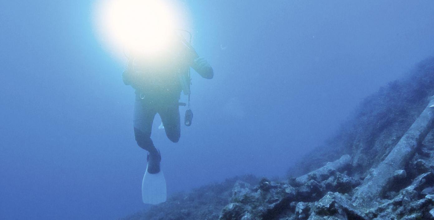 VIDEO: Podvodna izložba u blizini obale Floride