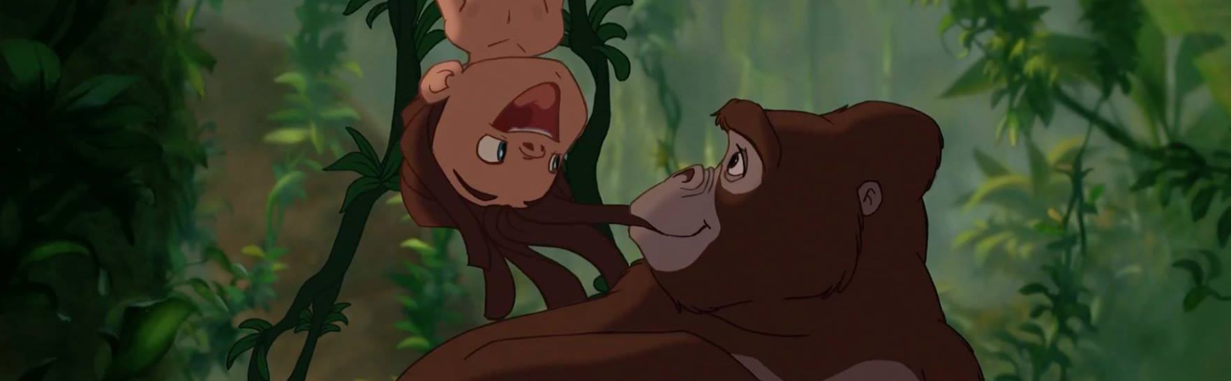 KRALJ DŽUNGLE Moderni Tarzan pokušao ući u zoološki vrt