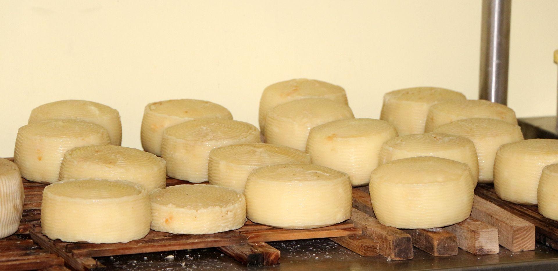 KREMLJ SE POHVALIO Rusi zaplijenili gotovo 500 tona 'ilegalnog' sira
