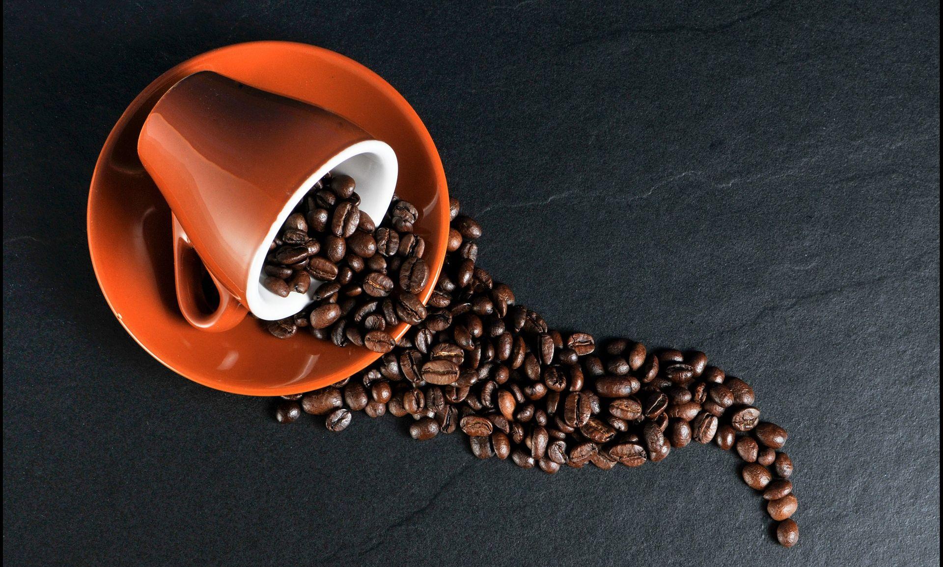 ZAŠTITNI UČINAK Kavom protiv raka debelog crijeva