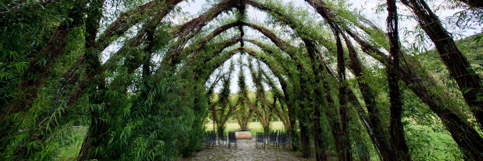 ZANIMLJIVO Crkva napravljena od sadnica vrbe