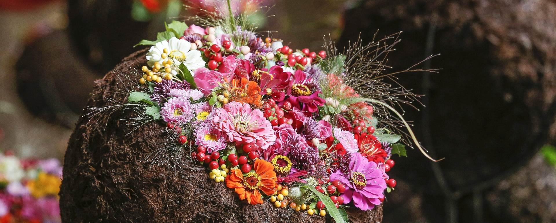 ZARAŽENO NAMETNICIMA: Rusija najavljuje strožu kontrolu uvoza nizozemskog cvijeća