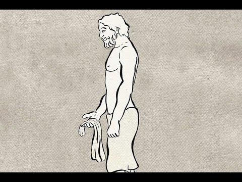 VIDEO: EVOLUCIJA U SAMO 40 SEKUNDI Pogledajte od kuda je 'krenuo' čovjek