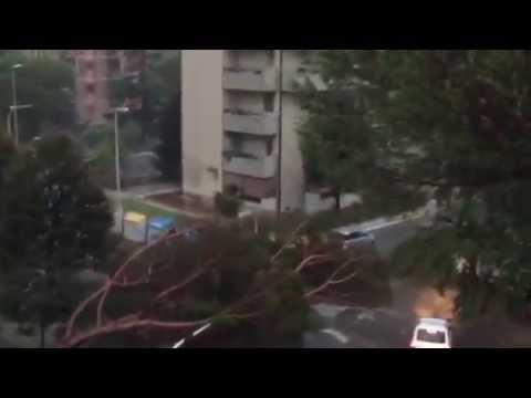 SNAŽAN TORNADO U FIRENCI Ozlijeđenih osoba dvadesetak