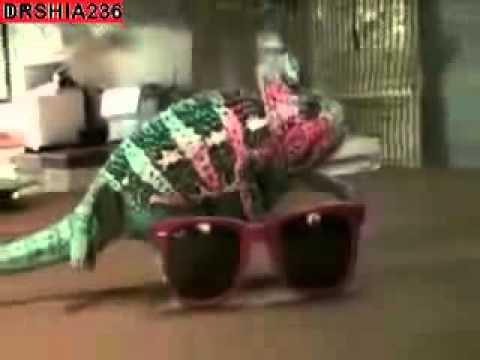 VIDEO: Pogledajte ovog šminkera kameleona…