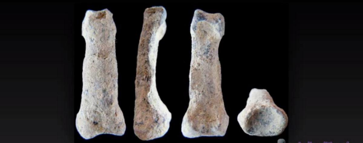 VIDEO: Najstarija kost ljudske ruke ikad pronađena?