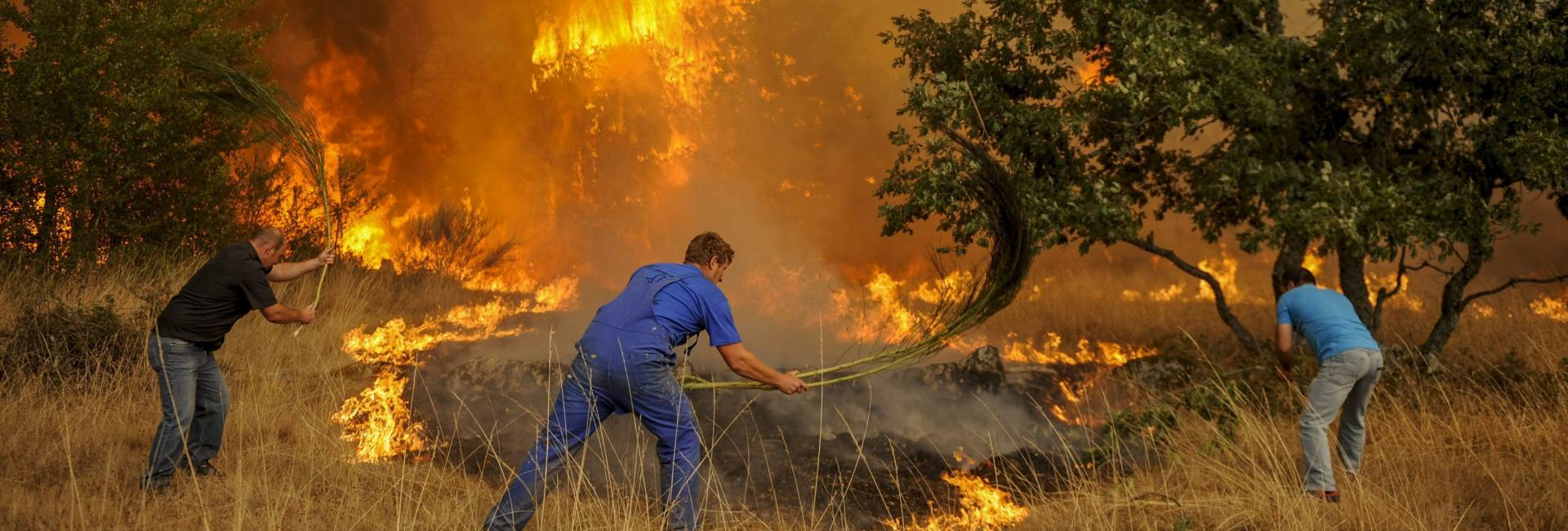 BORBA S VATROM: U požaru u Španjolskoj opožareno 1000 hektara šume