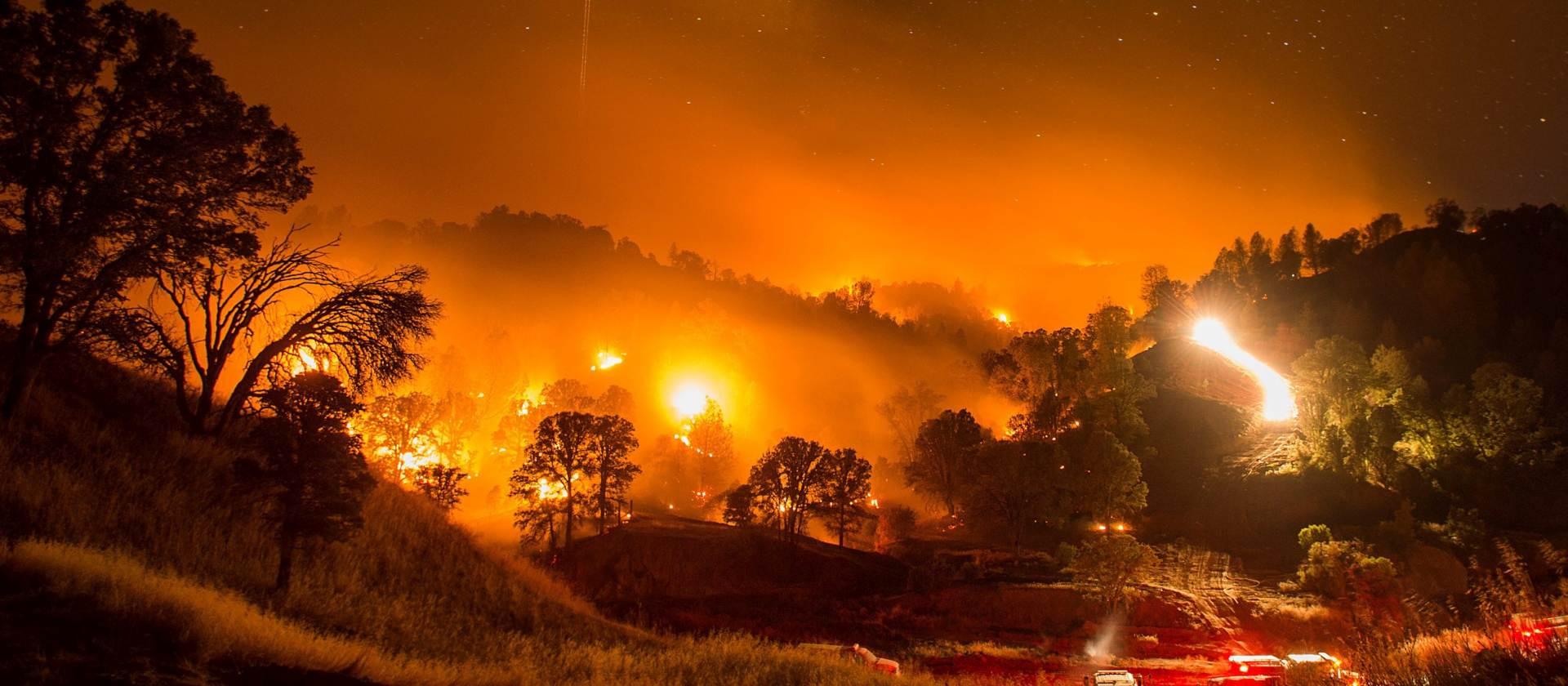 VIDEO: Kiša smirila šumski požar u Australiji