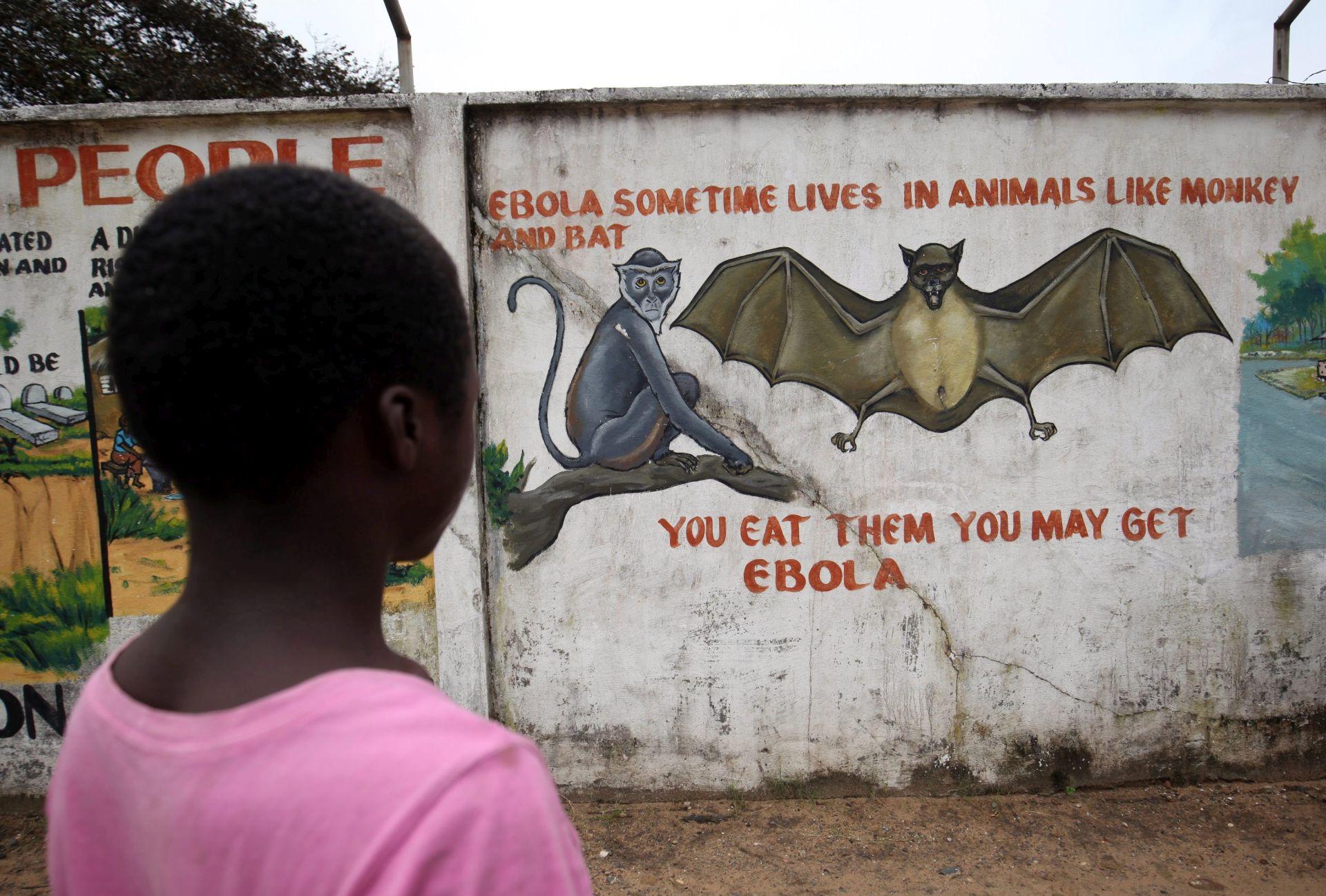 NAKON OBJAVE KRAJA EPIDEMIJE: Novi slučaj ebole u Sierra Leoneu, strahuje se od većeg broja zaraženih