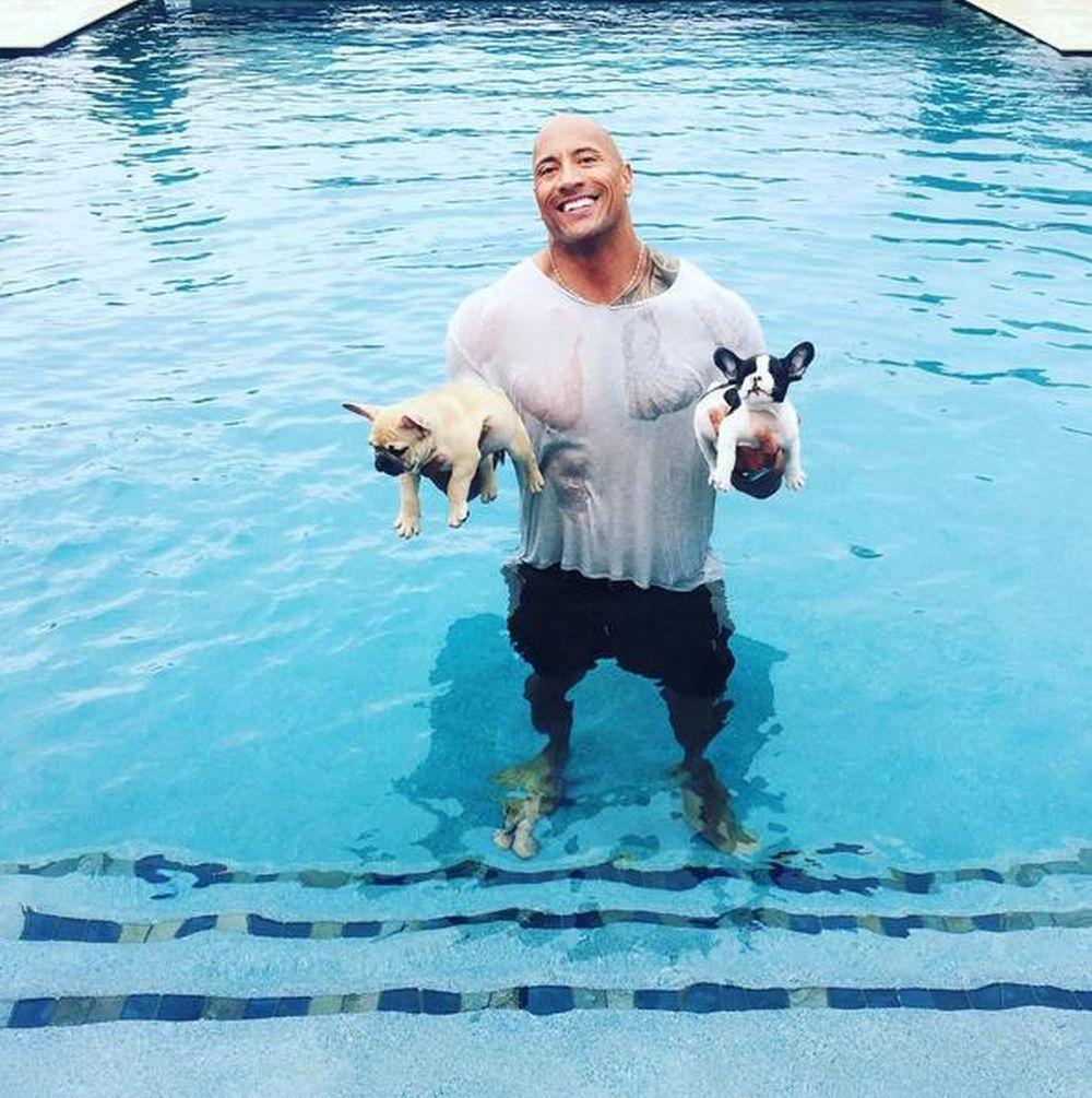 JUNAK I U STVARNOM ŽIVOTU The Rock spasio psiće od utapljanja