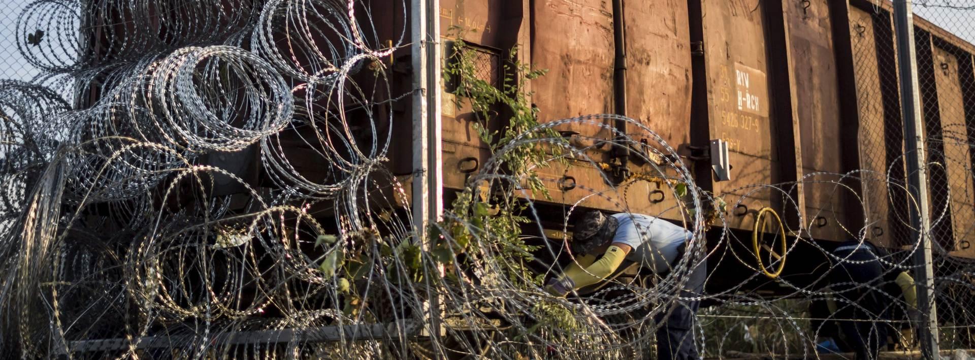 MAĐARSKI EUROZASTUPNIK: Svinjske glave na ogradi zastrašit će migrante