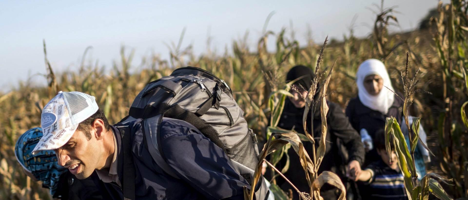 PRIJE NOVOG ZAKONA: U Mađarsku u nedjelju ušao rekordan broj izbjeglica