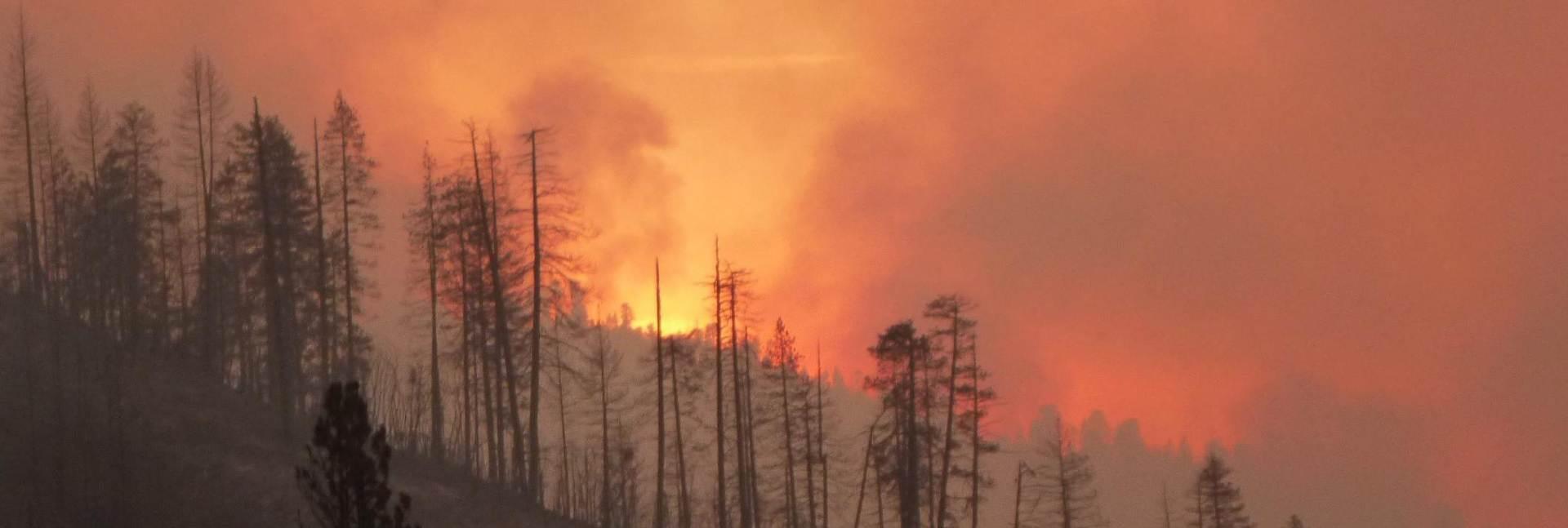 VIDEO: Snimka velikih šumskih požara u južnoj Kaliforniji