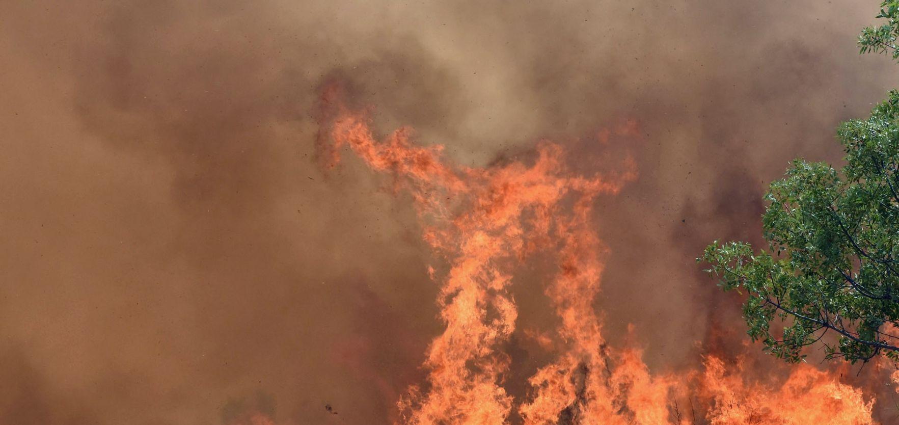 Ugašen požar u Brelima