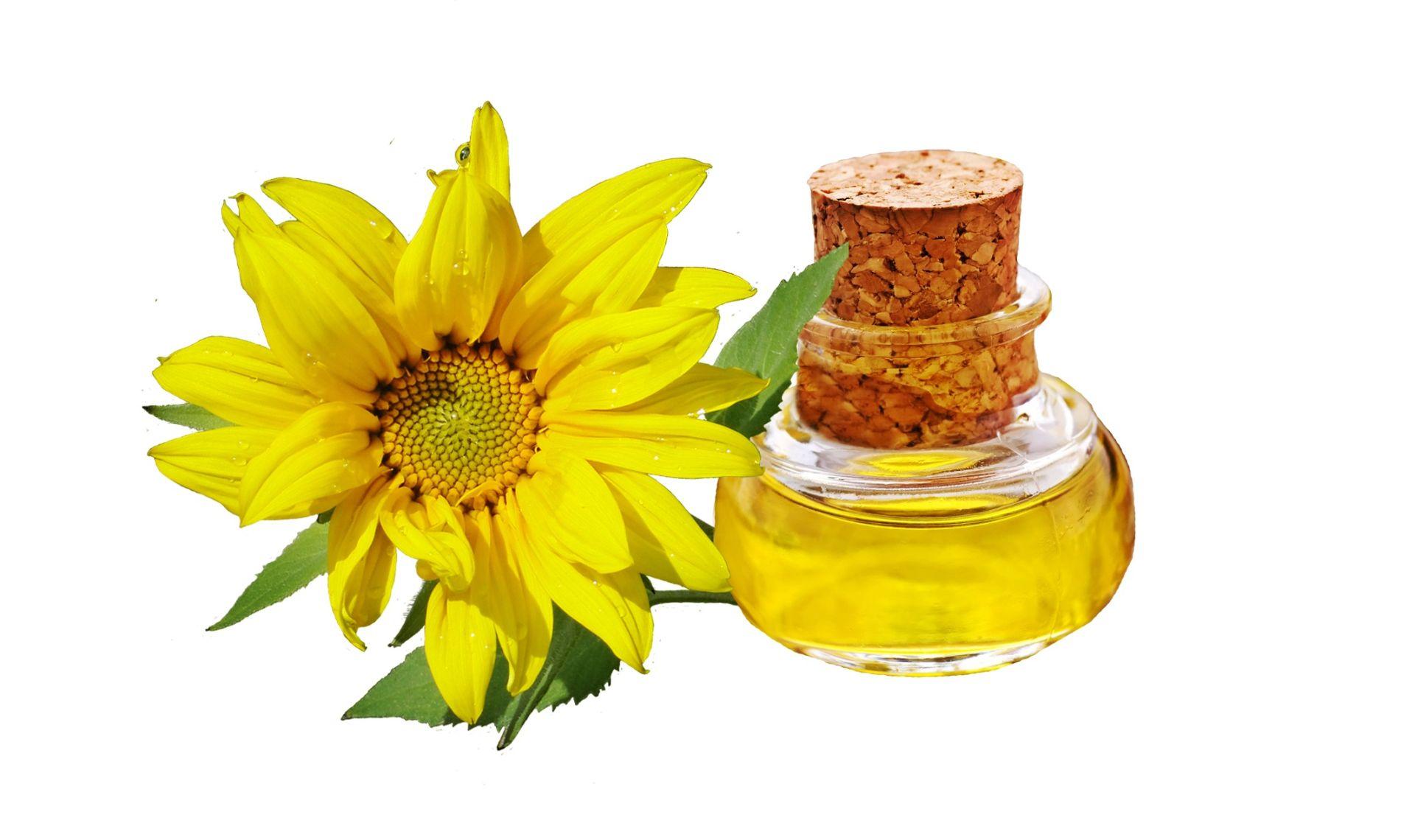 OSLOBAĐAJU TOKSIČNE KEMIKALIJE Biljna ulja štetna za zdravlje
