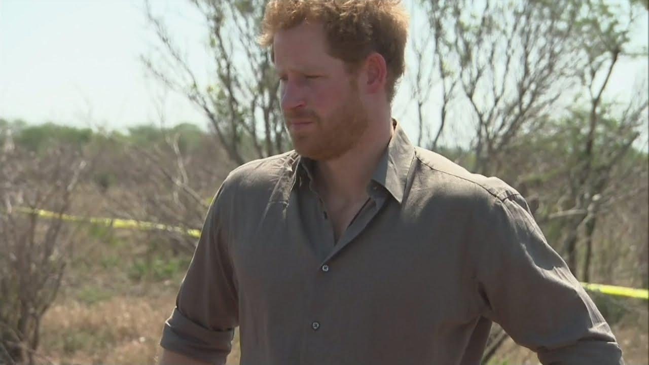 VIDEO: Princ Harry pozvao na zaštitu nosoroga u Africi