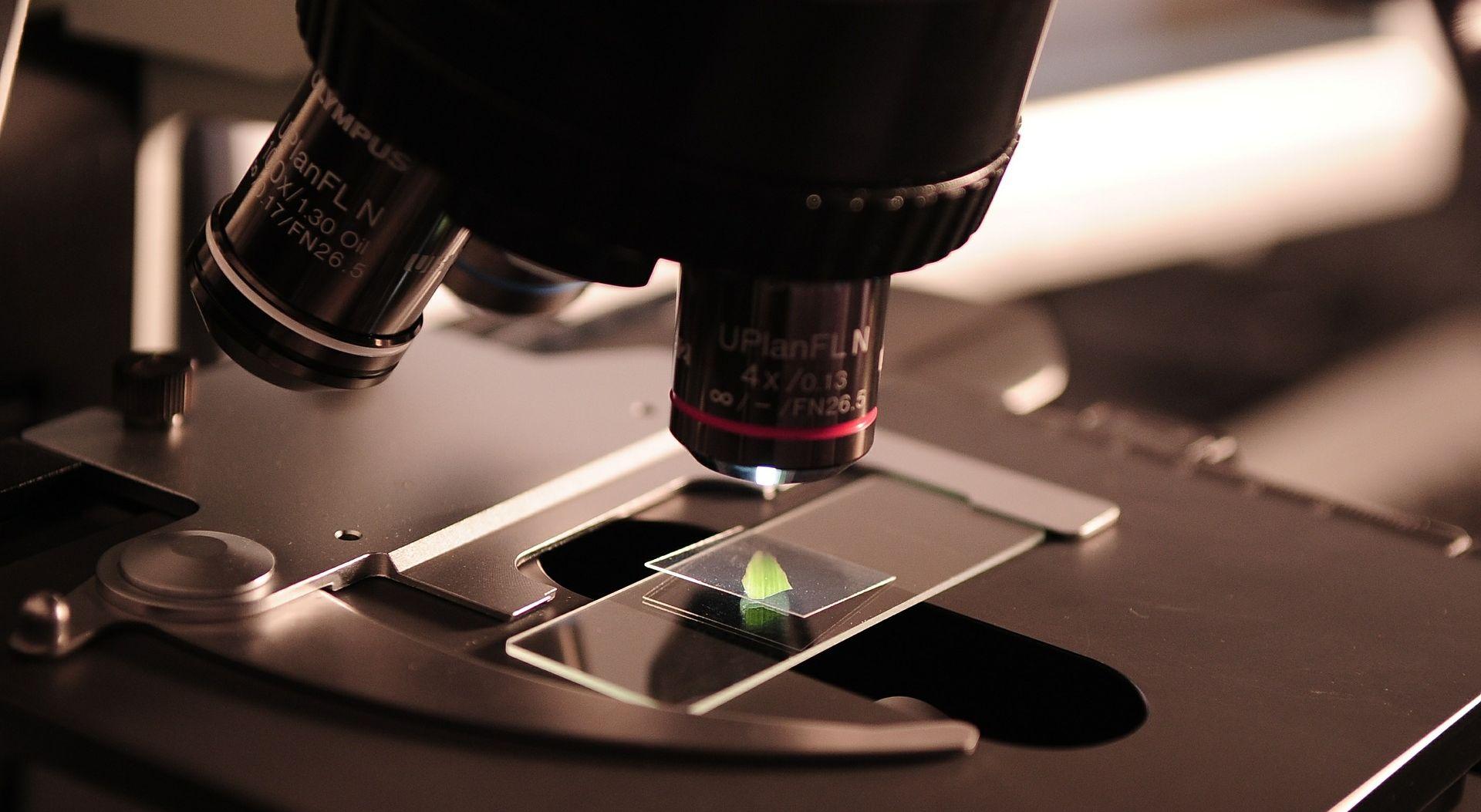 """""""BašTina znanosti"""" na Ruđer privukla velik broj ljubitelja znanosti"""