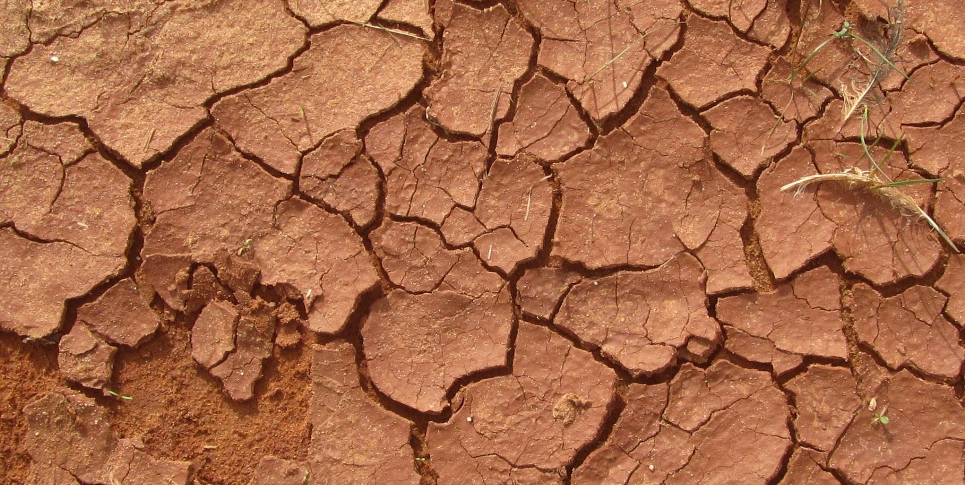 BRITANSKI STRUČNJACI Sljedeća bi godina mogla biti toplija i od 2015.