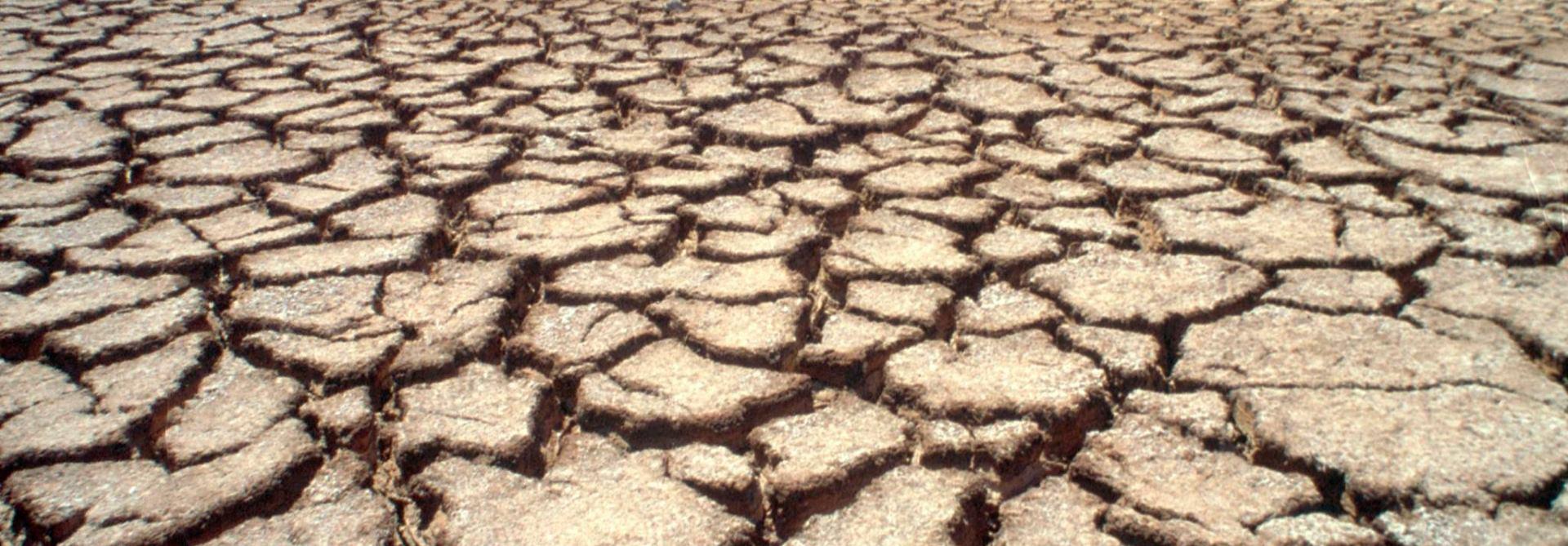 VIDEO: Velika suša u južnoj Africi upropastila usjeve