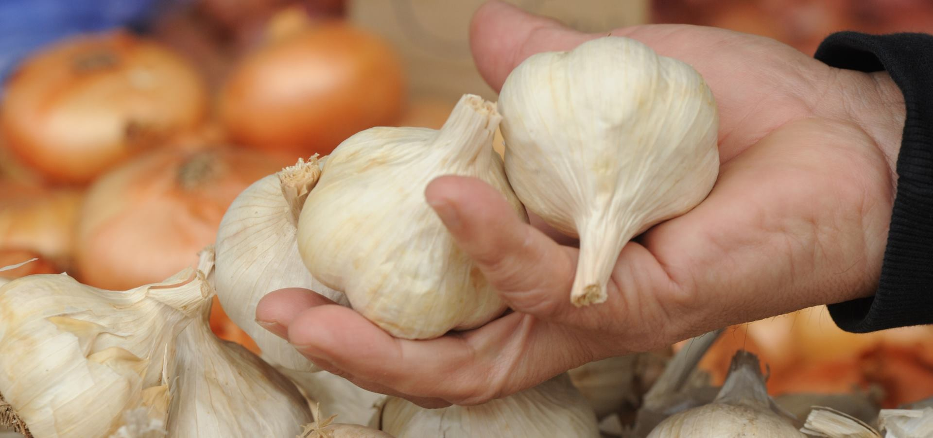 STARI RECEPT Češnjak dobar kod spriječavanja više vrsta bolesti