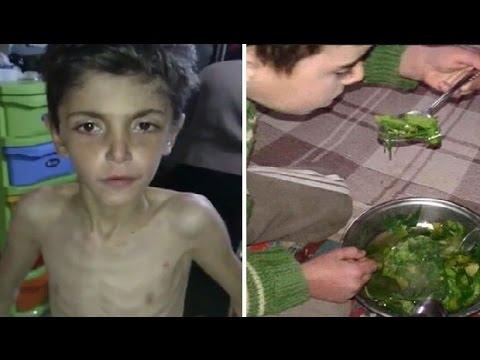 STRAŠNE SCENE: Zatočeni Sirijci u agoniji – jedu mačke, pse, zemlju i travu kako bi preživjeli