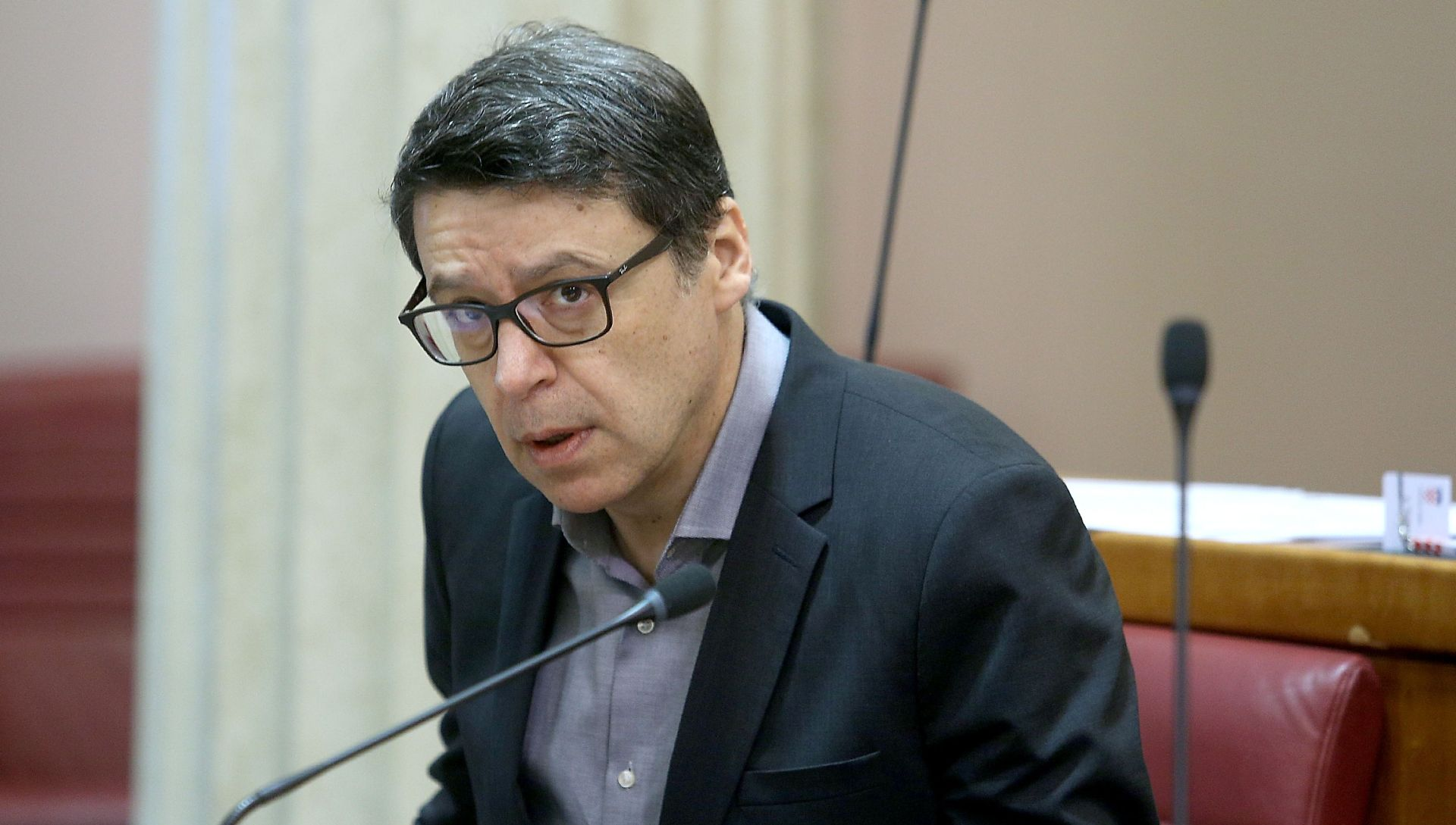 ŽELJKO JOVANOVIĆ 'HDZ je stranka opasnih namjera i opasnih zavjera'
