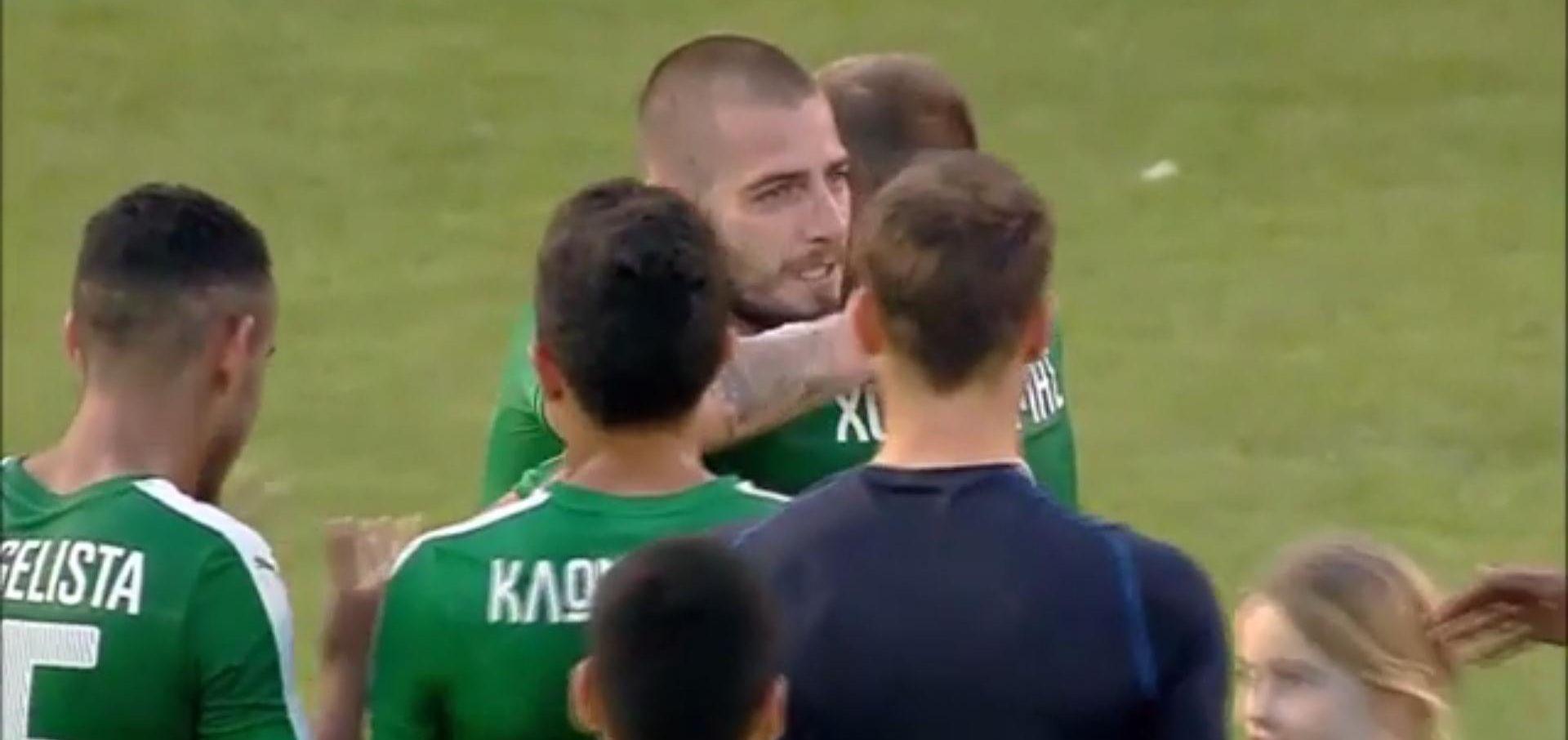 VIDEO: OPROŠTAJ OD NOGOMETA Mladen Petrić asistent u posljednjoj utakmici karijere