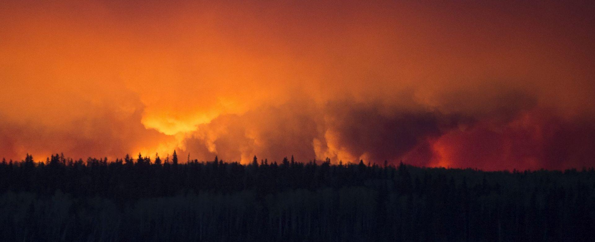 Hrvatske šume zaposlile više od 300 promatrača požara