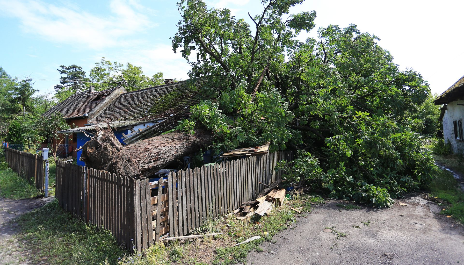 Osijek: Štete od nevremena veće od 250 milijuna kuna
