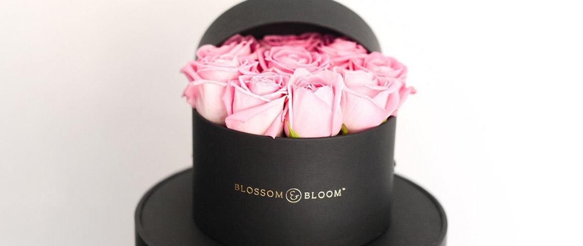 BLOSSOM & BLOOM Cvjetna galerija u centru Zagreba gdje svaka ruža ima svoju priču