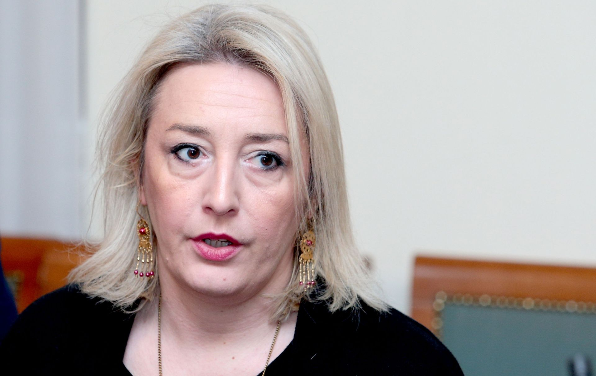 """MILAS KLARIĆ """"Nema govora mržnje, ali prava i interesi Hasanbegovićeve djece su povrijeđena"""""""