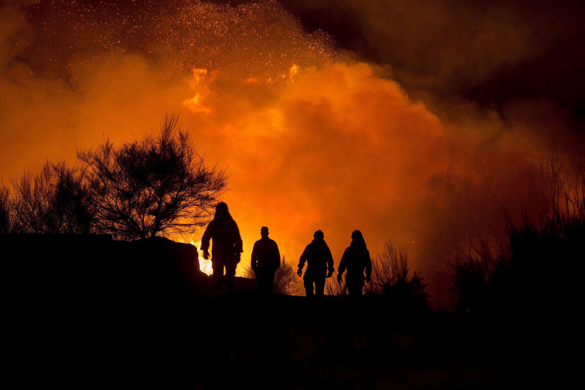 PROGLAŠENO IZVANREDNO STANJE Na Floridi više od stotinu požara