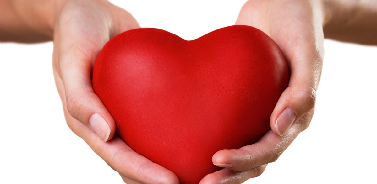 VLADIN ZRAKOPLOV Preveženo srce za transplantaciju 4-godišnjoj djevojčici