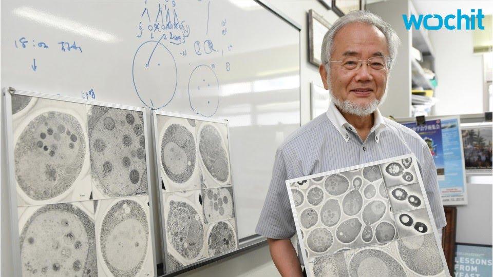 VIDEO: Yoshinori Ohsumi dobio Nobelovu nagradu za medicinu