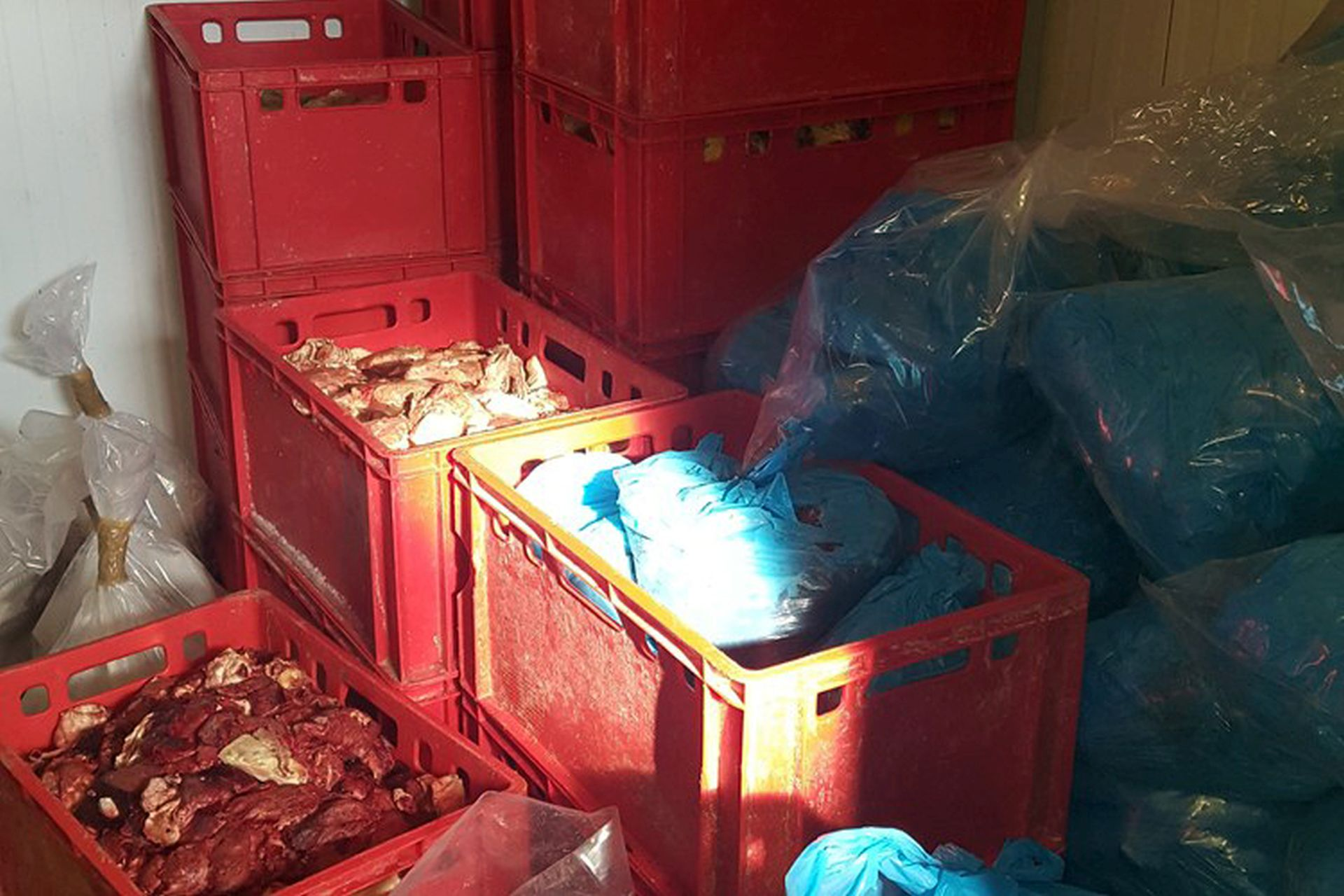 ILEGALNA MESNICA: Zabranjen rad, pet tona mesa ide na uništavanje