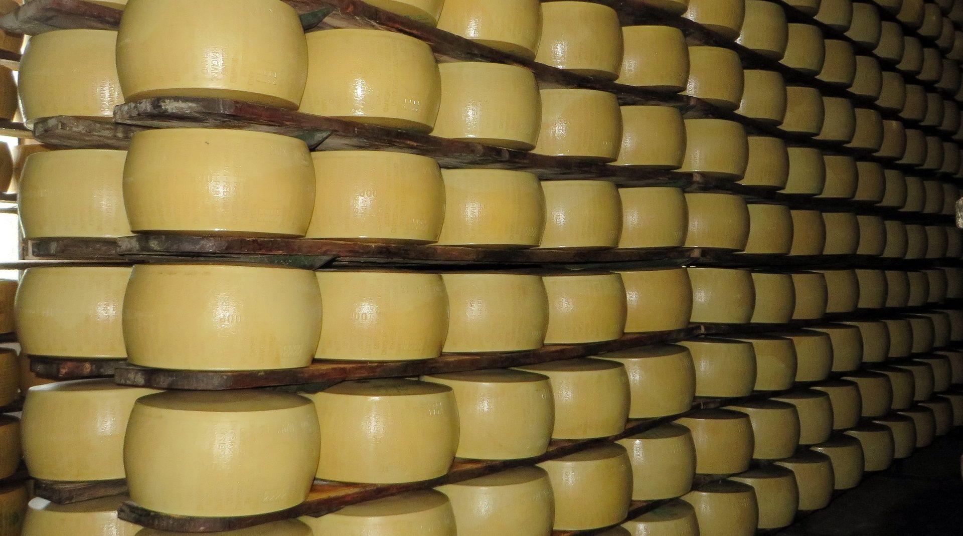 GDJE JE KRAJ Povučen i prominski sir – pronađena bakterija Listeria monocytogenes