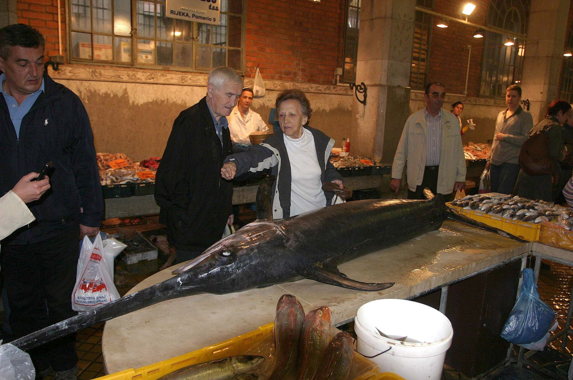 WWF UPOZORAVA: Mediteranska sabljarka je na rubu propasti