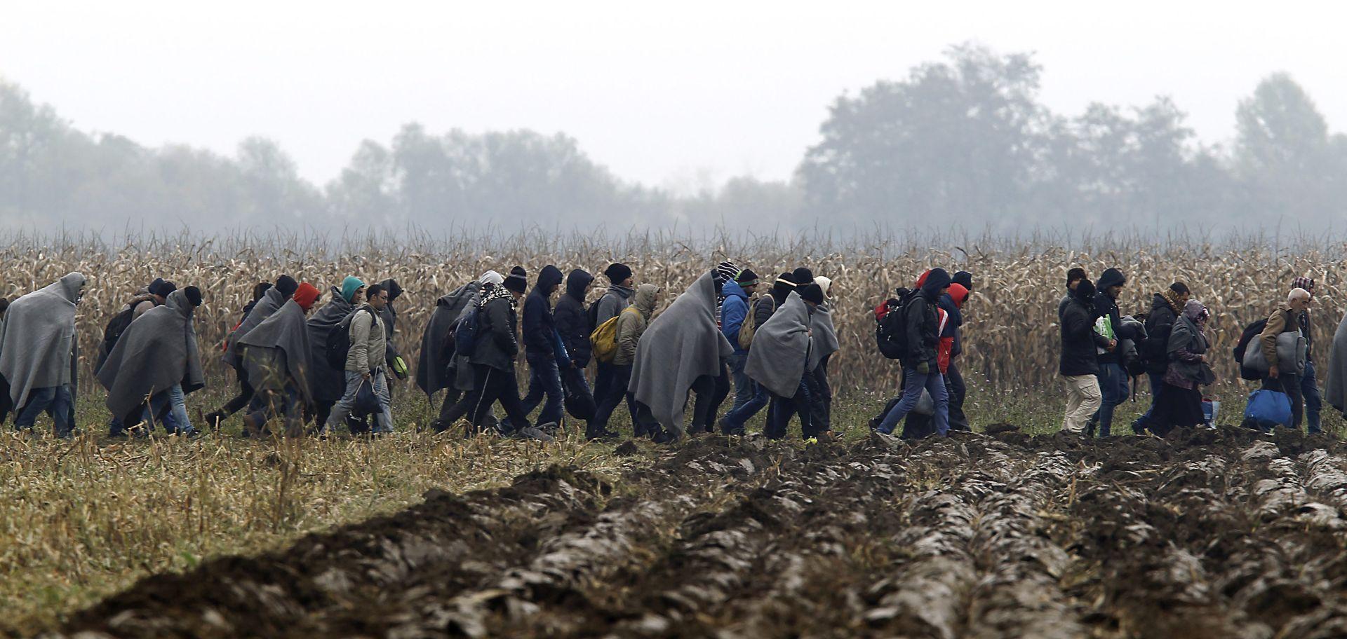 Slovenija priprema regionalni plan za kontrolu ilegalnih migracija