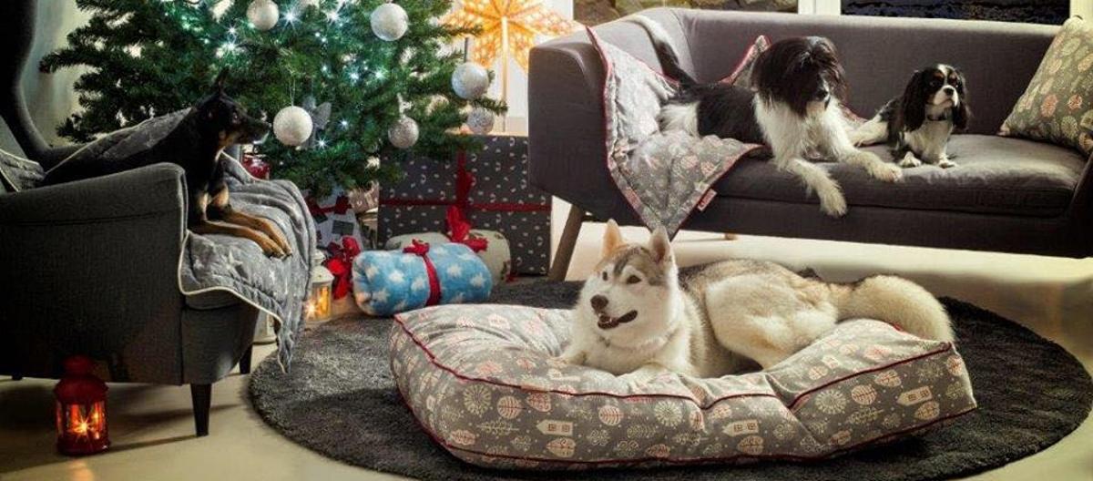 FOTO: Božićna limitirana kolekcija Qushin
