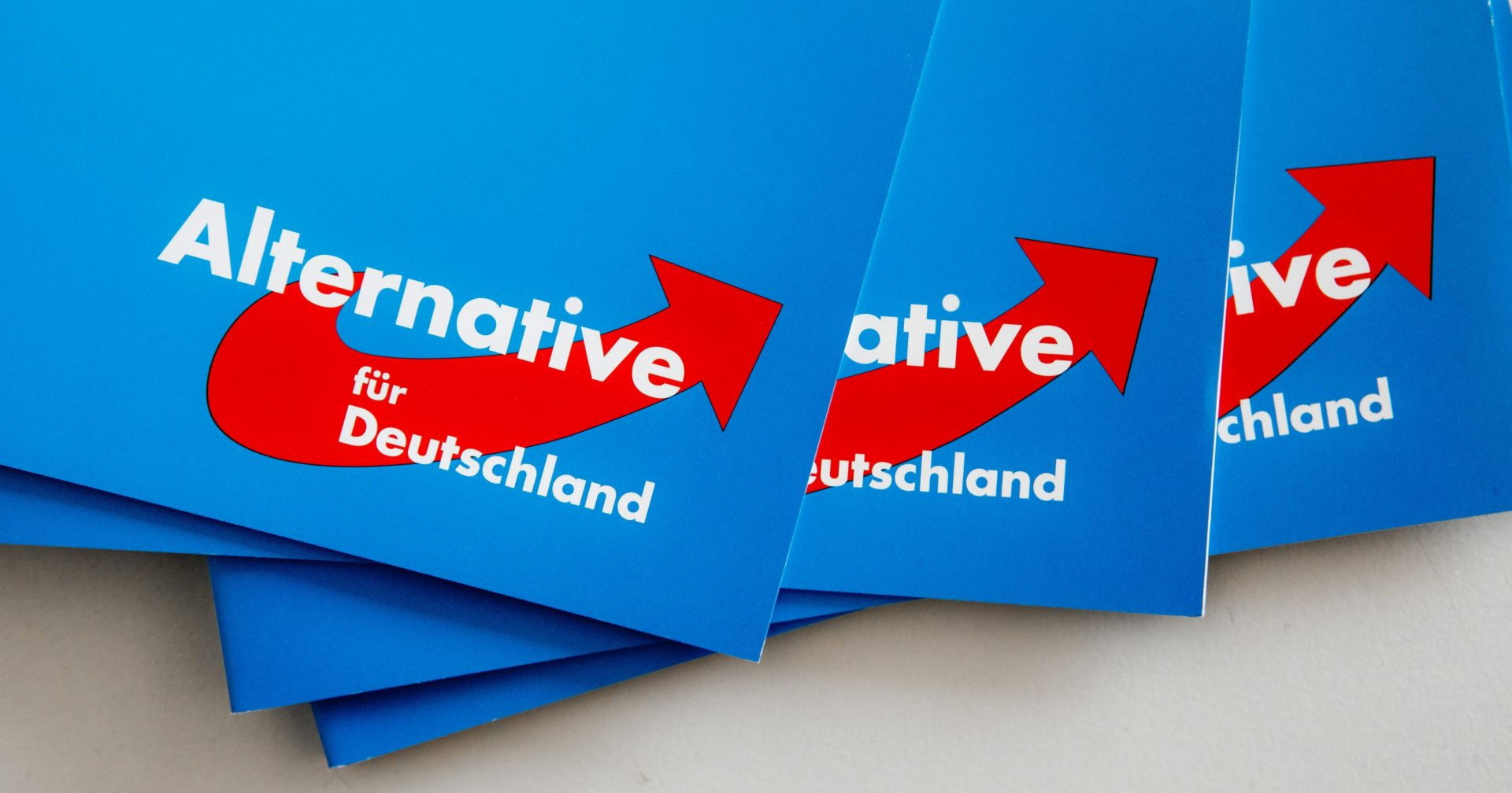Popularnost AfD-a narasla nakon napada u Berlinu