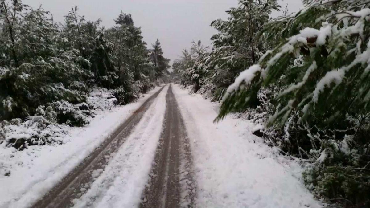 Snijeg zabijelio više predjele otoka Korčule