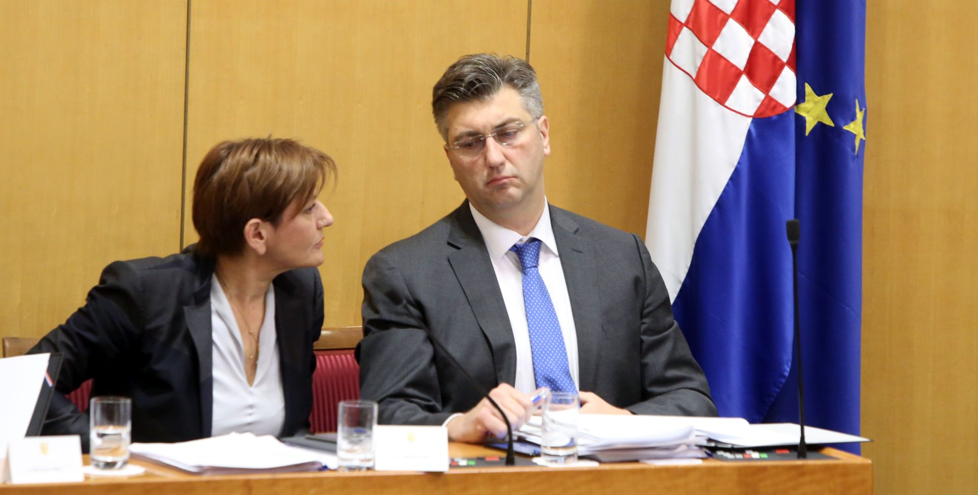 "PLENKOVIĆ: ""Nismo taoci Martine Dalić"""