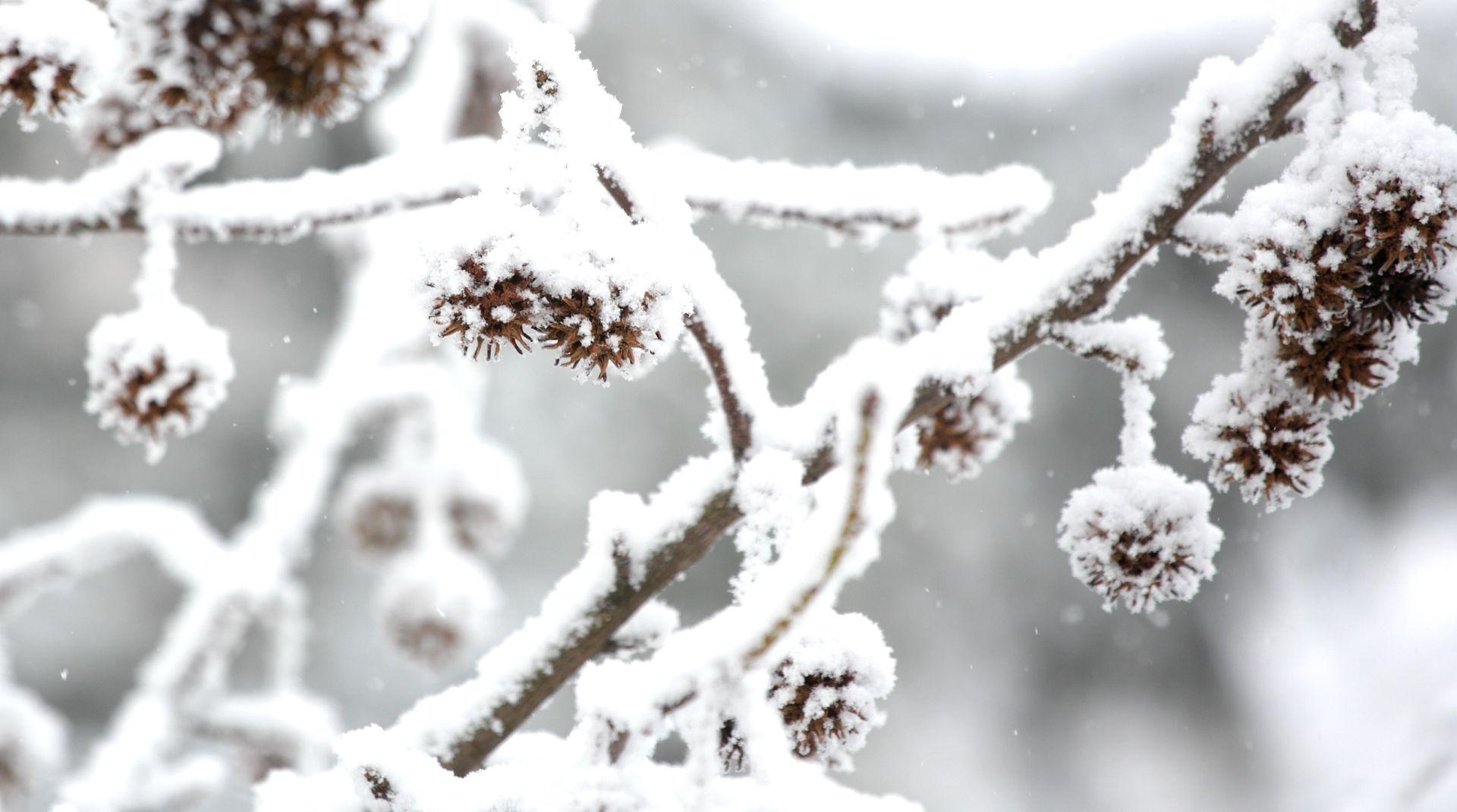 POSLIJEPODNE DOLAZI RAZVEDRAVANJE Snijeg u unutrašnjosti, na Jadranu kiša i olujna bura