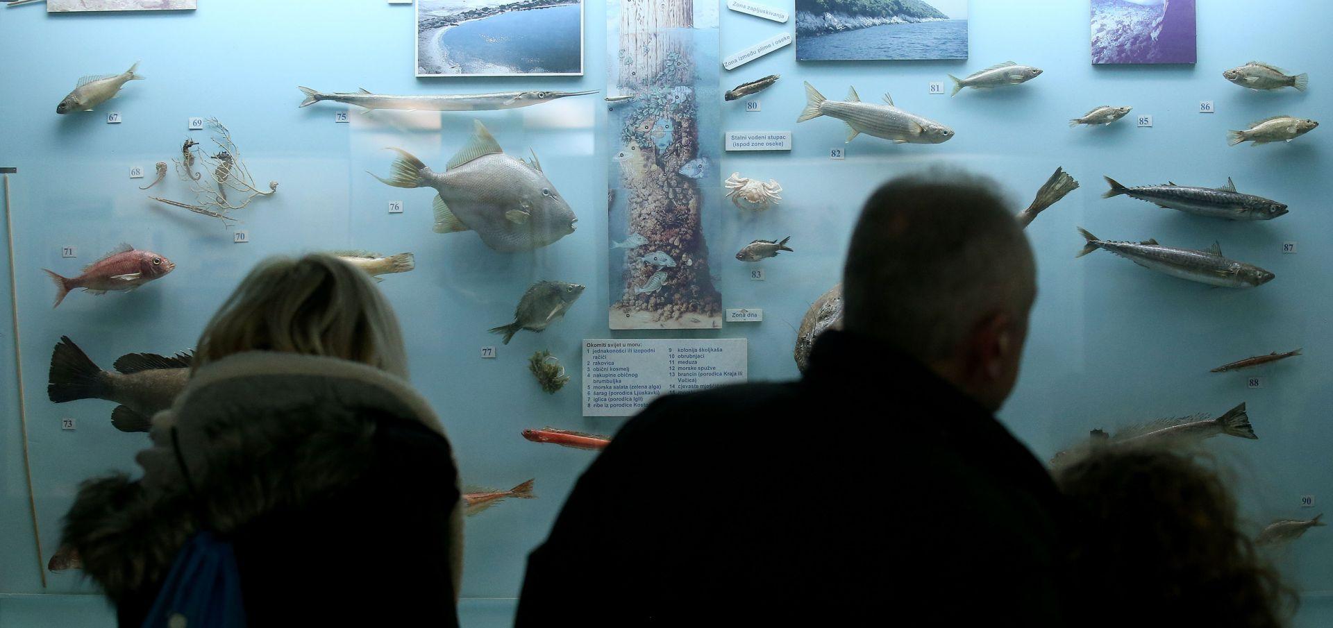 HMD: Više od 207 tisuća posjetitelja Noći muzeja, obrađeno 70 posto izvješća