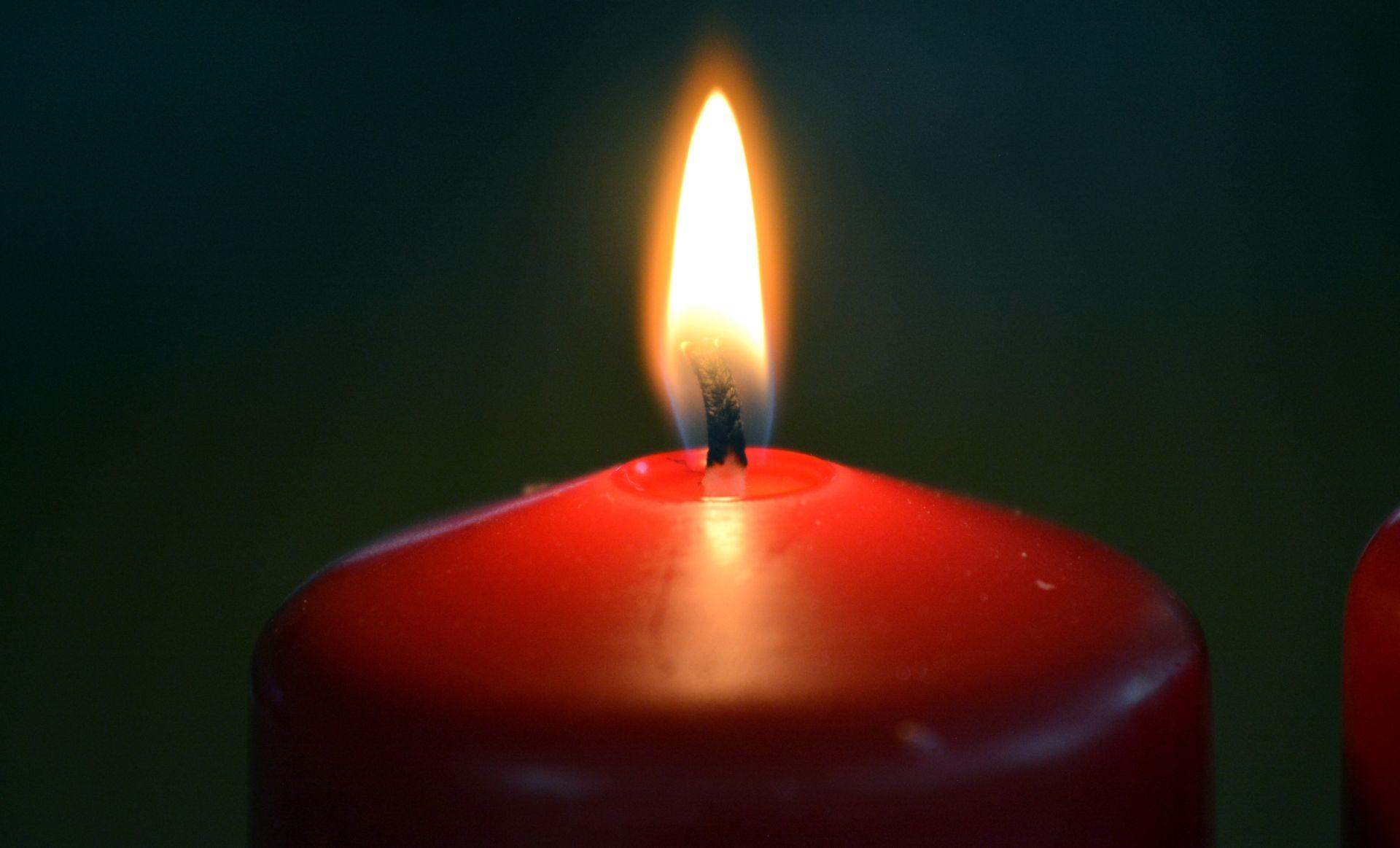 Umrle sijamske blizanke, studentice na sveučilištu