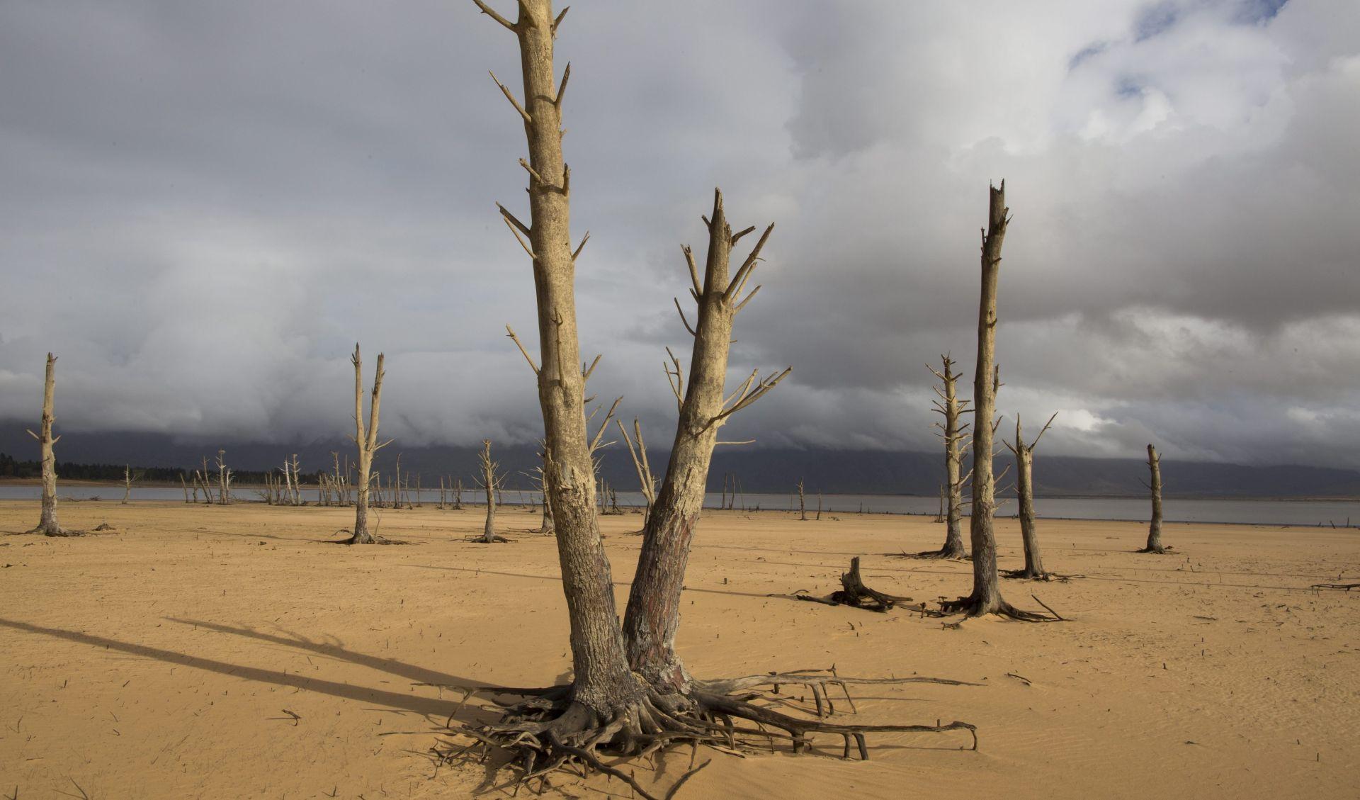 Proglašena nacionalna katastrofa zbog suše u Somaliji, glad prijeti 3 milijuna ljudi