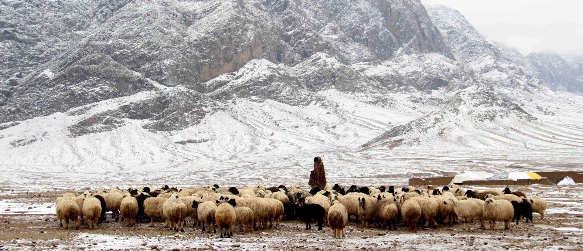 DESECI MRTVIH Dijelovi Afganistana i Pakistana pod debelim snijegom