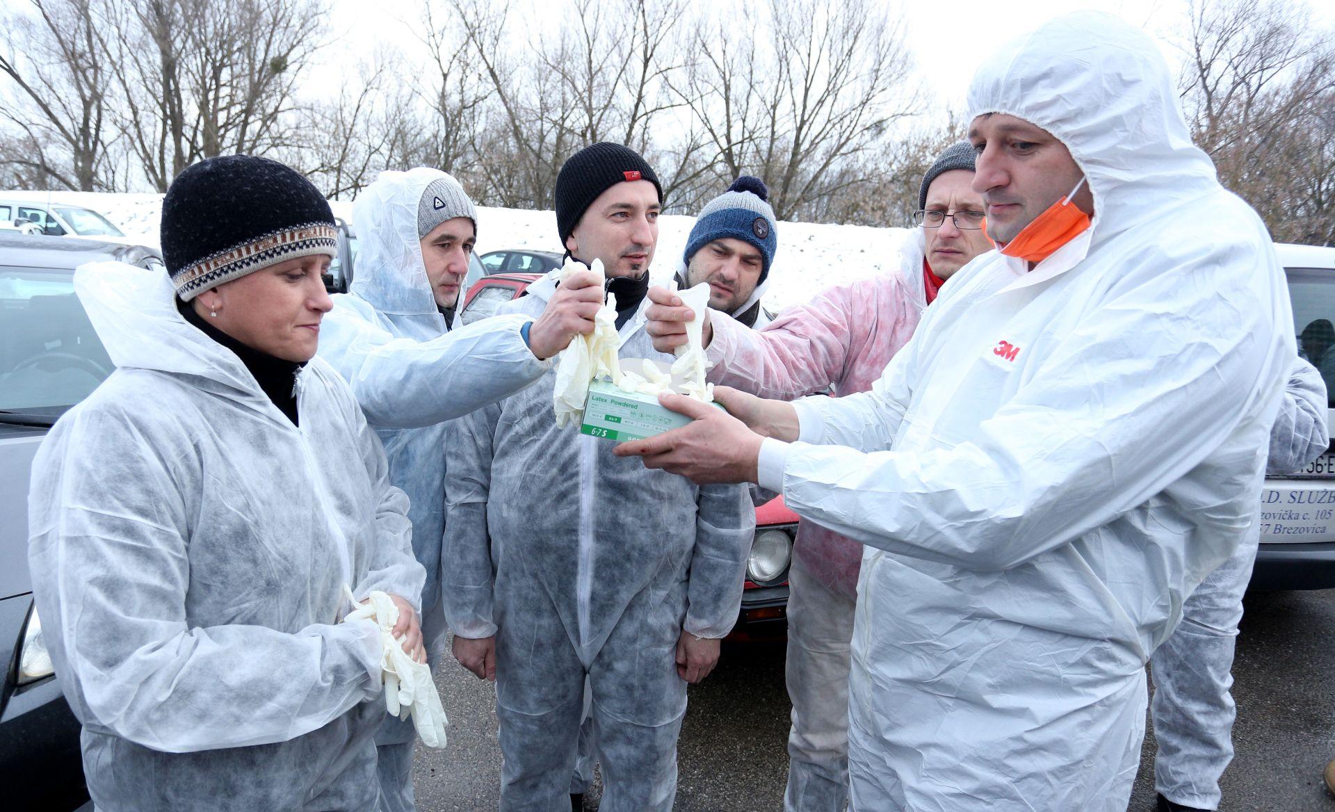 Ptičja gripa u Slavoniji, slijedi eutanazija